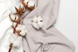 Flat lay Beautiful cotton branch, white and gray fabric on gray background top view copy space. Natural cotton fabric texture. Delicate white cotton flowers. Light cotton background. Eco textiles