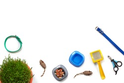 Flat lay composition with accessories for a cat isolated on white background. Pet care.