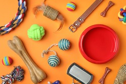 Flat lay composition with accessories for dog and cat on color background. Pet care