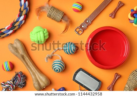 Flat lay composition with accessories for dog and cat on color background. Pet care stock photo