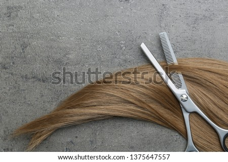 Flat lay composition with light brown hair, thinning scissors and space for text on grey background. Hairdresser service