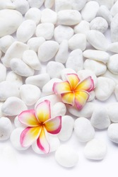 Flat lay composition with pile of white stones ,with pink frangipani flowers on white background. Space for text