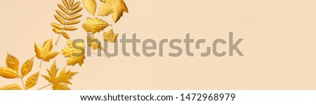 Flat lay creative autumn composition. Golden leaves on beige background top view copy space. Fall concept. Autumn background. Minimal concept idea, floral design. Long banner