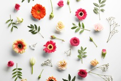 Flat lay of fresh flowers on white background