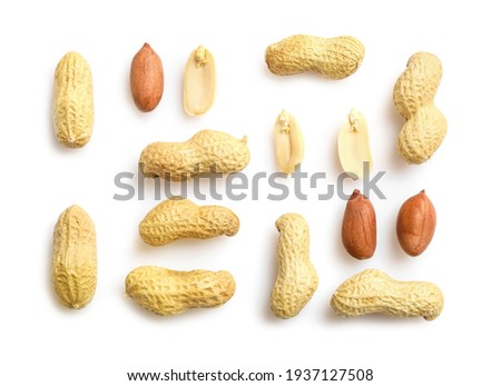 Flat lay of peanuts in nutshell, unpeeled and peeled peanuts isolated on white background. Top view. Сток-фото ©