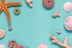 Flat lay on marine holiday theme with corals, starfish, shells and crab on blue background