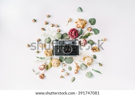 Flat lay. Vintage retro photo camera, beige roses and green leaves
