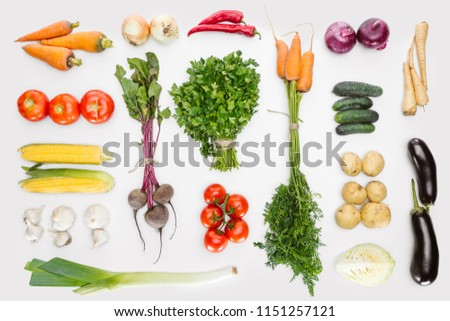 flat lay with fresh autumn vegetables arranged isolated on white #1151257121