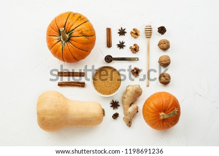 Flat lay with various pumpkins, cinnamon stick and  cane sugar knolled together on white cement background - Shutterstock ID 1198691236