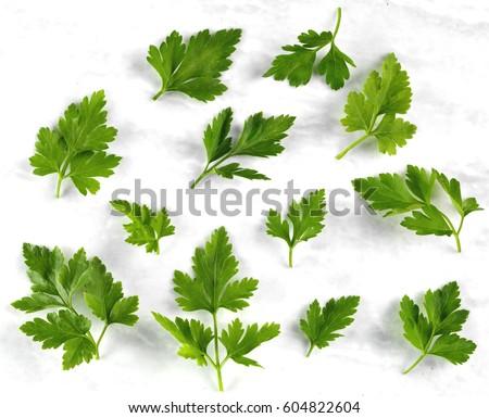 Shutterstock FLAT LEAF PARSLEY