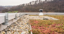 Flat roof with gravel drainage and roof greening