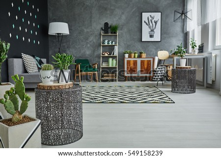 Flat with decorative metal accessories, cactus and floor panels #549158239