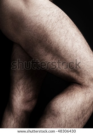 muscles of leg. Muscles+of+the+leg+and+