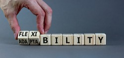 Flexibility and adaptability symbol. Businessman turns wooden cubes and changes words 'adaptability' to 'flexibility'. Grey background, copy space. Business, flexibility and adaptability concept.