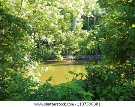 Flint River View