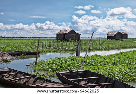 Floating gardens with wooden stilt houses and boats at  the Tonle Sap lake in Cambodia. The Tonle Sap is the largest freshwater lake in South East Asia .