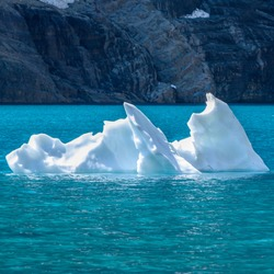 Floating Iceberg contrasts with blue water of alpine lake