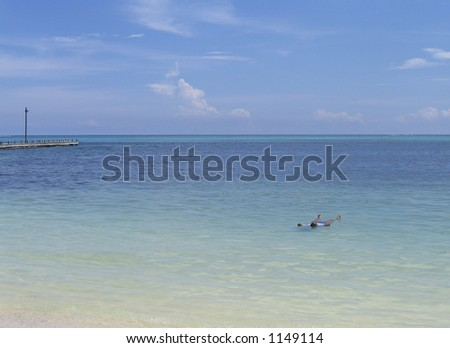 floating in the ocean off the shore of belize