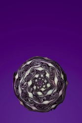 Floating purple cabbage positioned in bottom section of frame with lots of copy space/negative space above for text and customisation. Food photo set against purple background