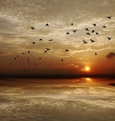 Flock of crows flying across an apocalyptic fiery sunset sky with reflection on a tidal wave.