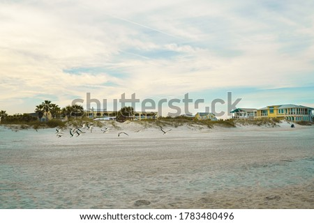 Flock of seagulls flying over beach houses at sunset.