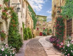 Flolar, old and vintaj Italy street