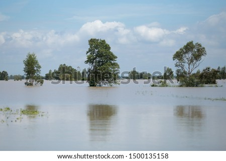 Flood disaster from Tropical storm Causing flooding, Agricultural area is damaged and poor houses in rural areas, Laos, Thailand, Burma, Cambodia, Vietnam, Philippines, Indonesia Southeast Asia