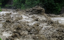 Flood on a mountain river after heavy rain.
