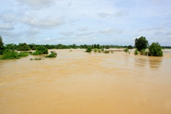 flood water on agriculture area