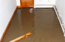 Flooded basement, suitable for contractors or basement renovation specialists