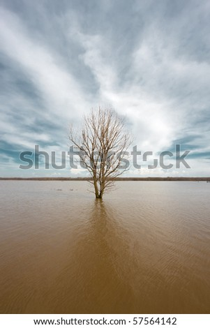 Flooded Evros river - physical border between Greece and Turkey - stock photo