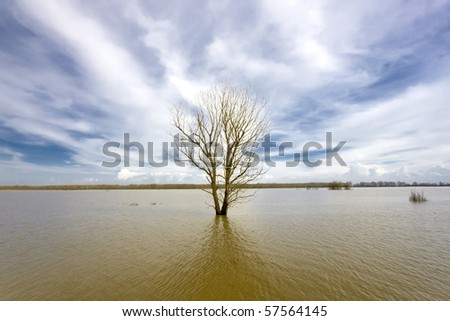 Flooded Evros river - physical border between Greece and Turkey