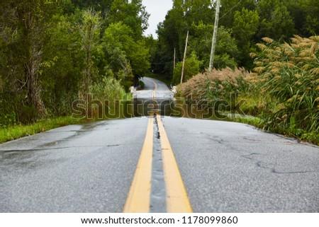 Flooded roadway after heavy rain storm near a marsh