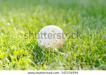floorbal ball in green grass with sunlight