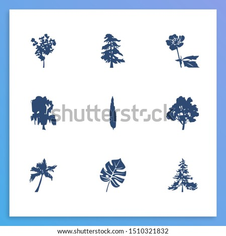 Flora icon set and buttercup with tropical leaf, cypress and walnut tree. Willow related flora icon for web UI logo design.