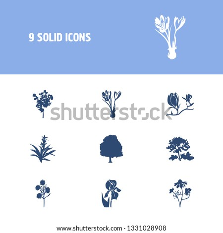 Flora icon set and siren flower with iris, chrysanthemum and magnolia. Gerber related flora icon  for web UI logo design.