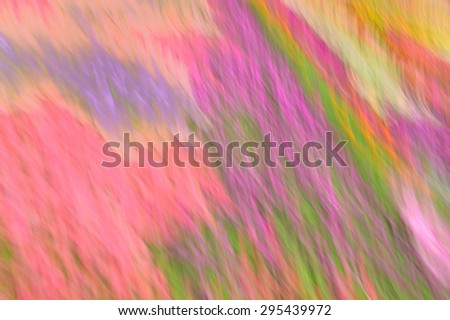 floral abstraction with blur effect with all the colors of the rainbow