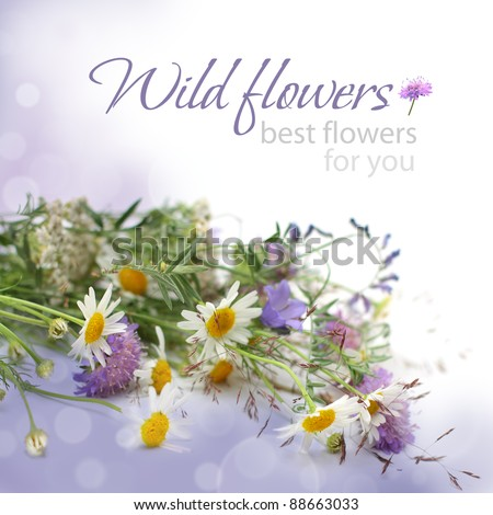 Floral background - flowers, birthday gift