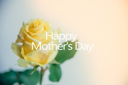 floral background for mother's day: the rose Bud with the words