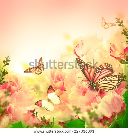 Floral background of roses and butterfly wild flowers