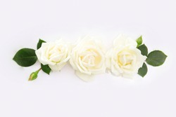 floral background of white roses