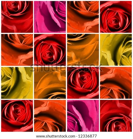 Floral background with 16 quadrangles, multi-square with close-up of roses in different beautyful colors.