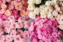 Floral carpet, flower texture, shop concept. Beautiful fresh blossoming flowers roses, spray roses. Blossom of pastel color in vases and pails. Top view.