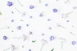 Floral composition. Frame made of lilac flowers. Flat lay, top view