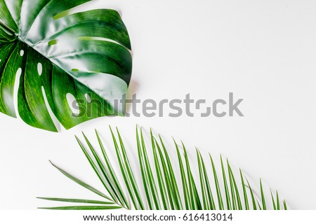 floral concept with green leaves on white background top view mock-up #616413014