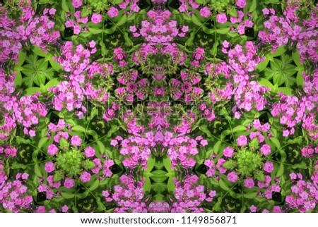Floral Design of Pink Hydrangea   #1149856871