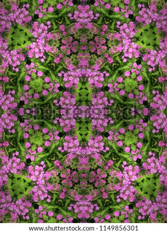 Floral Design of Pink Hydrangea Gift Wrap/Wall Paper      #1149856301