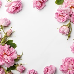 Floral frame made of pink damask roses and green leaves on white background. Flat lay, top view.