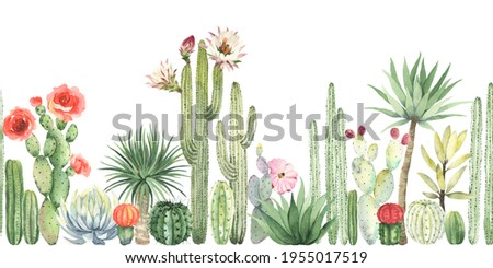 Floral horizontal border with blossom cacti and succulent, watercolor seamless pattern, colorful illustration isolated on white background in mexican style. Stock photo ©