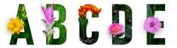 Floral letters. The letters A, B, C, D, E are made from colorful flower photos. A collection of wonderful flora letters for unique spring decorations and various creation ideas. clipping path
